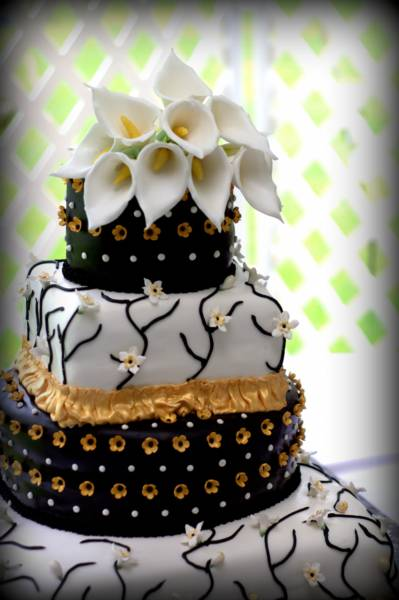 Spencer Sweet Shoppe Fondant Black & White Wedding Cake